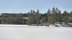 20160224090783 (koppomcolors) Tags: sweden sverige scandinavia värmland varmland koppomcolors håltebyn