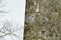 Clomantagh Castle County Kilkenny Sle-na-gig (Salmix_ie) Tags: county kilkenny ireland megalithic stone ancient nikon worship gig craft carving historic christian pre druid february nikkor fertility 2016 silenagig sheilana