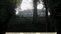 Palacio del Rey_Yaxchilán