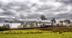 WSR_2016_03_11_091 (Phil_the_photter) Tags: watersmeet minehead leighwoods wsr 7f westsomersetrailway 8f 53808 53809 34098 standardtank templecombe 48624 80043 80072 roebuckcrossing