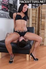 Brutal Facesitting (brutalfacesitting) Tags: ass fetish butt bdsm mistress femdom slave smothering facesitting