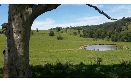 223 Hanleys Creek Road, Dungog NSW