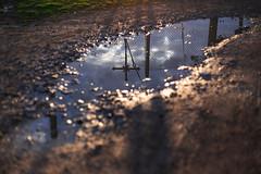 18/02/2016 (ClaraWendy) Tags: sunset sun water sunshine rain puddle reflex tramonto cross cloudy walk country memories thoughts memory thinking sole acqua ricordi pioggia crux croce reflexes ricordo pozzanghera pascoli evoluzione