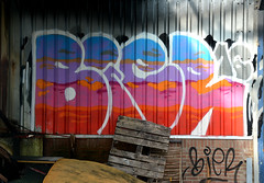 graffiti breukelen (wojofoto) Tags: holland graffiti nederland netherland bier breukelen wolfgangjosten wojofoto