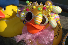 Dressed up ducks for the Ramsbottom Ruck Race 2016 - 9 (Tony Worrall Foto) Tags: county uk england game silly race fun duck costume cool stream tour open place northwest display unitedkingdom many painted country north group ducks competition visit location lancashire plastic area sunlit northern update daft duckrace attraction lancs ramsbottom coolducks welovethenorth