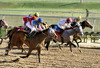 "2016-01-03 (41) r3 Lauralea Glaser on #6 Humorous Chant (JLeeFleenor) Tags: photos photography md marylandhorseracing marylandracing laurelpark jockey جُوكِي ""赛马骑师"" jinete ""競馬騎手"" dżokej jocheu คนขี่ม้าแข่ง jóquei žokej kilparatsastaja rennreiter fantino ""경마 기수"" жокей jokey người horses thoroughbreds equine equestrian cheval cavalo cavallo cavall caballo pferd paard perd hevonen hest hestur cal kon konj beygir capall ceffyl cuddy yarraman faras alogo soos kuda uma pfeerd koin حصان кон 马 häst άλογο סוס घोड़ा 馬 koń лошадь maryland"