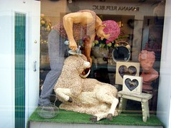 City of Wells, Somerset, window display of sheep shearing made out of flowers and petals (rossendale2016) Tags: life city pink flowers original red england woman reflection alarm clock window glass shop lady hair wooden petals fantastic republic basket sheep display artistic farmers shepherd being farming egg bisque horns wells somerset banana tourist plaster size replica made jeans bust cutting wife florist buds farmer unusual colourful stool fabulous ram lifesize coloured iconic rare clippers polished authentic clever shearing holder challenging imitation glazed unbelievable sheared intricate photogenic ingenious shepherdess modelled pollyfields