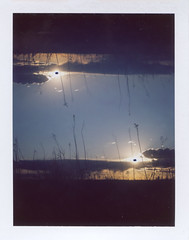 Back to it (benjaflynn) Tags: light sunset sky plants sun film nature grass silhouette clouds analog rural vintage dead polaroid iso100 evening countryside sticks fuji antique doubleexposure horizon retro multipleexposure flip fujifilm filmcamera prairie trippy setting bellows manualfocus instantcamera pola cloudporn rotated landcamera packfilm opensky foldingcamera instantfilm instantprint thecountry scannedfilm primelens sunsetporn fp100c skyporn automatic230 polalove doubleexpo rurality portraitorientation fixedfocallength peelapartfilm theprairie epsonperfectionv500 benseidelman sauerfamilyprairiekame landcameraauto230 polaroid114mmf88lens