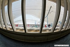 Salvador Dali Expo Liege Guillemins (27)_timestamp (luyckx_philippe) Tags: expo pentax wideangle indoor fisheye salvadordali k3 guillemins 1017mm pentax1017mmfisheye pentax1017mmf3545fisheye pentaxk3 philippeluyckx