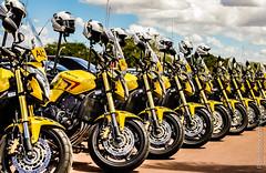 Honda Hornet - PMDF (Romildox) Tags: public bike honda de military police safety militar transit motorcycle vehicle hornet pm transito polizei brasilia policia 190 trnsito polcia polizia politi publica veculo cb600f seguranca policiamento bptran