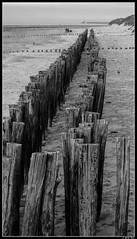 sangatte_01 (Les photos de Laurent) Tags: wood sea mer france beach mar madera sand nikon north sable wave playa arena cap cape 1855mm vague plage ola nord bois norte capote pasdecalais sangatte d3200