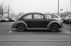 VauWeh (XE-HRO) Tags: vw bug fuji 400 neopan bessar voigtlnder classique bwfilm a49
