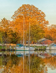 Calm winds (shannon4462) Tags: light sunset tree nature water colors sailboat port marina reflections landscape md dusk maryland framing calvertcounty herringtonharbour calmwinds d7000