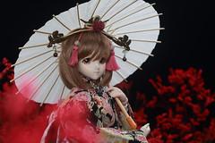 Q18A2058 (Lucky_E) Tags: doll kimono dd ims dds dollfiedream