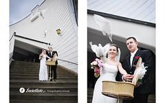 swietliste-fotografia-slubna-Bydgoszcz-slub-fotografujemy-emocje-golebie