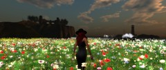 Through the flowers (Myra Wildmist) Tags: ocean flowers sea lighthouse castle field dark landscape outdoors ruins waves skies ominous foreboding sl secondlife luanesworld myrawildmist