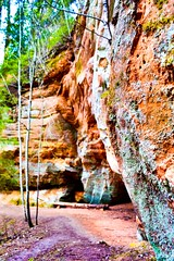 Let's go hiking! (Inga P.) Tags: nature contrast lights moss hiking shades cliffs adventure redish