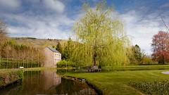 Annevoie (Yasmine Hens) Tags: blue green europa flickr belgium ngc jardin vert parc namur hens yasmine wallonie annevoie beu jardinsdannevoie iamflickr flickrunitedaward hensyasmine
