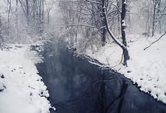 Cute... (Matt Champlin) Tags: life winter snow cold home nature weather spring random windy cny april snowing wtf blizzard miserable springtime aprilfools skaneateles