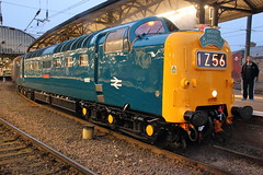 55009 1Z56 (Rob390029) Tags: blue classic station train newcastle coast track br 5 transport central tracks rail railway loco class east transportation transit rails type british locomotive 55 napier ncl mainline deltic ecml alycidon d9009 55009