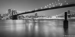 Panorama Brooklin Bridge 1.jpg (falandscapes) Tags: city bw newyork blancoynegro water horizontal blackwhite manhattan bn panoramica panoramicas levy nuevayork brooklinbridge gothamcity seriadas ciudadgotica exportados moiseslevy