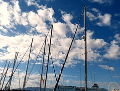 Mstiles (camus agp) Tags: espaa barcos panasonic nubes malaga puertos mastiles fz150