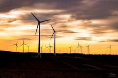 Windkraft Simonsfeld (Christian He) Tags: canon eos austria sterreich sonnenuntergang wind outdoor energie natur felder himmel wolken generator dmmerung windrad sonne bume strom niedersterreich windrder windkraft windpark weinviertel ko korneuburg 24105l erneuerbare ernstbrunn 700d simonsfeld