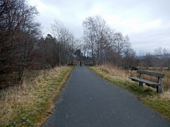 Bench by a cycleway, 2016 Mar 23 (Dunnock_D) Tags: road uk trees sky cloud grass forest woodland bench grey scotland highlands cloudy unitedkingdom britain path highland cyclepath footpath kingussie cycleway badenoch