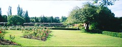 Well Hall Pleasaunce September (5) (Matthew Huntbach) Tags: roses panoramic eltham widepic wellhall pleasaunce