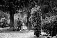 Moody weather (Endre Majoros) Tags: schnee blackandwhite friedhof snow monochrome cemetery blackwhite availablelight hamburg monochrom schwarzweiss ohlsdorf aprilwetter sonynex7 tag176 365fotosorg