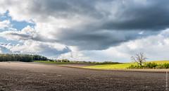 Clouds II (Henk Verheyen) Tags: netherlands clouds landscape outside spring nederland wolken nl lente buiten landschap groesbeek gelderland