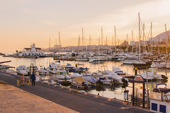 Akitas in the harbour (Anna Elk) Tags: pink sunset summer dog dogs canon landscape boats coast harbour andalucia costadelsol malaga akita inu 70d canon70d