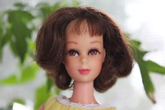 Best Flea Market Finds #3 : Short Flip Francie (tamsykens1) Tags: family friends vintage mod doll barbie fresh flip short era daisy mattel francie 60sran