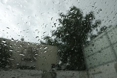 Rain  (abidabdulrahman) Tags: travel cold art love rain sony rainy goodbye friday ksa       vscocam rx100m3