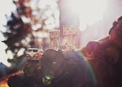 Happy Miniature Monday! (Sandra H-K) Tags: sun bus sunshine vw backlight vintage toy miniature bokeh lensflare vwbus sunflare danbo toyphotography 35mm14 toybus danboard danbomini canon70d miniaturemonday
