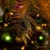 Joyeuses Fêtes-Explore (Bouteillerie) Tags: christmas green canon square december vert noël décembre hollidays ornements carréfrançais bouteillerie