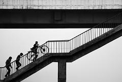 ascend III (1/4th) Tags: bridge people blackandwhite bw india monochrome bicycle silhouette stairs climb nikon geometry agra minimal highkey nikkor minimalist ascend cwc uttarpradesh nikon80200mmf28d 80200mmf28dnew   d7000 yamunabridge chennaiweekendclickers cwc384