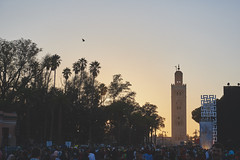Kutubiya Mosque, Marrakech (williwieberg) Tags: morocco marrakech djemaaelfna d810 kutubiyamosque