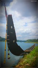 DSC_1552 (2) (|| Nellickal Palliyodam ||) Tags: india race temple boat snake kerala lord pooja krishna aranmula avittam parthasarathy vallamkali parthan othera palliyodam koipuram poovathur nellickal jalothsavam