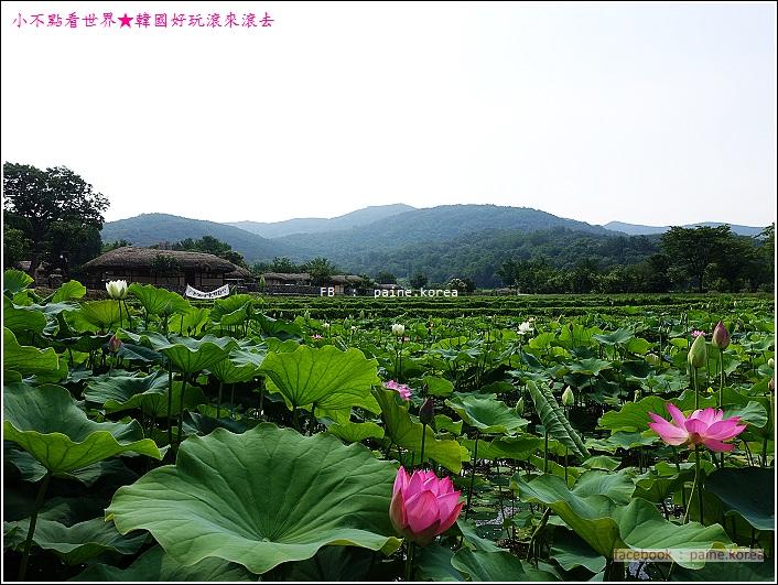 牙山外巖民俗村 (15).JPG