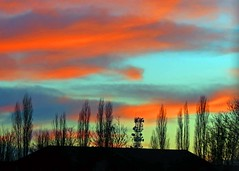 11Jan16 Sunset Trees and Roofs (Daisy Waring World) Tags: sunset red sky green torquoise satellitetower treelinesilhouette
