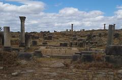imgp3742 (Mr. Pi) Tags: morocco column volubilis archaeologicalsite