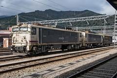 "269-352 "" pseudo-tándem"" (Andreu Anguera) Tags: girona catalunya cataluña gerona portbou japonesas estacióndetren andreuanguera locomotoras269"