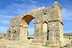 DSC_1257 (Ashcan Alley) Tags: arch roman morocco triumphalarch volubilis