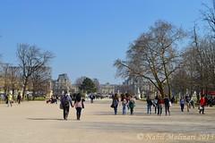 Paysage : Jardin des Tuileries (Nabil Molinari Photography) Tags: jardin des tuileries paysage