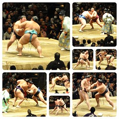 2016 1  14  (Danburg Murmur) Tags: sport japan audience robe mosaic competition judge   sumo wrestler spectators spectator nihon fundoshi rikishi tky rygoku mawashi  sum  wrestlingmatch  nihonkoku nipponkoku   dohy rygokukokugikan shikirisen rygokukokugikansumoarena ichmage