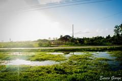 DSC_0047 (Promao80) Tags: lago tramonto cuba moron cavallo viaggio vacanza calesse