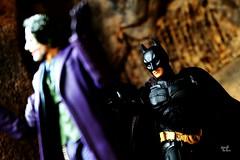 "Joker : ""okay2..i lose this time.."" (r.triananda) Tags: actionfigure batman joker heroes gotham villain medicom toyphotography mafex batmanthedarkknightrises"