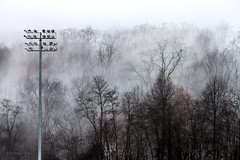 Foglight (Western Maryland Photography) Tags: trees winter light snow fog maryland frostburg alleganycounty ef70300mmf456isusm canoneos7d