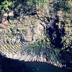 Columnar Basalt Rosette, Molalla River (BLMOregon) Tags: river rosette basalt blm molalla columnar